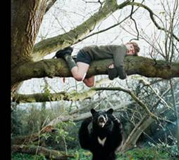 Stock Photography - boy climbing a tree to escape bear. fotosearch - search stock photos, pictures, images, and photo clipart